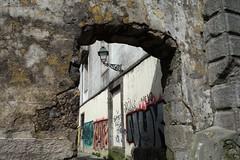DSC04576 (noémiegirardet) Tags: porto portugal europe water douro bird goelan house old red sky river blue wine food wall tag graffitis architecture
