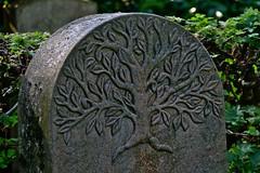 Stadtfriedhof Stcken 025 (michael.schoof) Tags: hannover friedhof grabmal