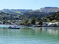 Akaroa. Tourist boat waiting for a harbour cruise upon this collapsed caldera. (denisbin) Tags: akaroa crater caldera harbour cliffs french duvauchelle bankspeninsula newzealand christchurch library royalalbatross albatross pacificocean cottage church swimwithdolphins boat anglican
