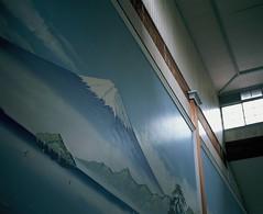 Mt. FUJI Forever (YUKIHAL) Tags: pentax67 smc p67 90mm f28 rdpiii fujifilm film provia100f 120 bokeh mediumformat analog 67 6x7 pentax