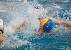 2A150123 (roel.ubels) Tags: uzsc zpb hl productions waterpolo eredivisie utrecht krommerijn 2016 sport topsport
