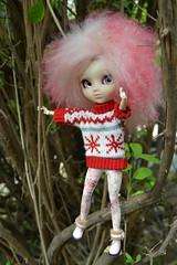 DSC_4665 (DollEmiou) Tags: kotori pulliptiphona custo mohair pink obitsu cutedoll doll pullip