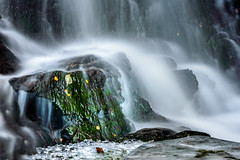 Green spot (Troutfisher266) Tags: norway autumn creek nikon waterfall outdoor longexposure leafs green trondheim srtrndelag no