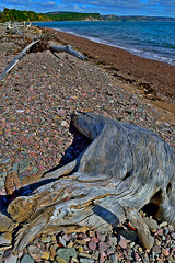 Driftwood at the community of Spencer's Island, Nova Scotia. (bluenosersullivan) Tags: atlanticcanada novascotia gloosecaptrail imagemakerstrip bayoffundy decay driftwood spencersisland beach davesullivan can