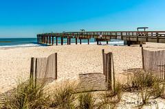 St Augustine Beach pier (jkellogg01) Tags: beach st johns county saint augustine pier sand fence sea oats bikini sun tan tanning laying out blue sky white