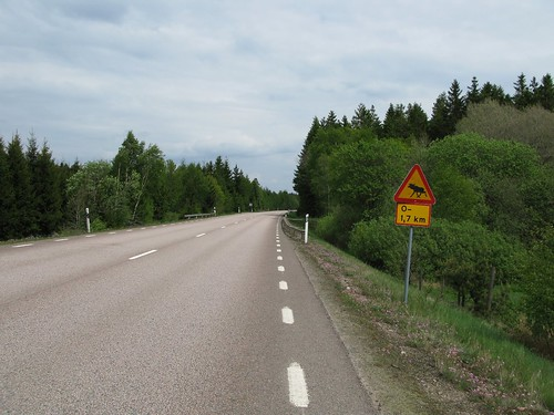 Road 114 between Munka-Ljungby and Örkelljunga 2009