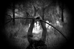 Reencuentro (Jezabel Galn) Tags: tree nature campo cadenas woman mujer plantas naturaleza shadow