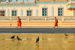 Bonzes marchant devant le Palais Royal de Phnom Penh [ Cambodge ~ Cambodia ] (emvri85) Tags: asie asia cambodge cambodia phnompenh travel voyage bonzes orange 85mm palaisroyal
