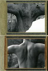 S. (denzzz) Tags: portrait polaroid polaroid55 polaroid54 expired blackwhite blackandwhite analogphotography filmphotography instantfilm hylasmag polavoid wista45dx fujinona 180mm 240mm 4x5 largeformat dyptich skancheli