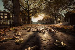 autumn square (bjdewagenaar) Tags: autumn leafs light pavement low trees people street city urban houses buildings gorinchem gorcum holland dutch raw lightroom wide angle sigma sony a58 alpha