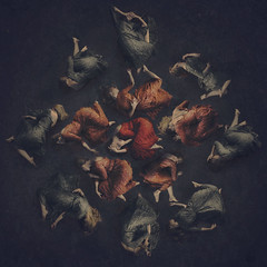 at the heart (brookeshaden) Tags: