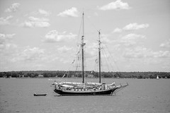 Sails down (-gregg-) Tags: bw sail boat bay st michaels md clouds sky