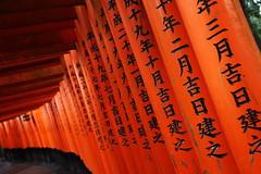 Torii at Fushimi Inari (Teruhide Tomori) Tags: 伏見稲荷大社 京都 神社 torii 鳥居 日本 fushimiinari shrine kyoto japan tradition red japon