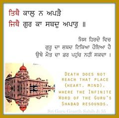 ਤਿਥੈ ਕਾਲ ਨ ਅਪੜੈ (DaasHarjitSingh) Tags: srigurugranthsahibji sggs sikh sikhism gurbani guru granth waheguru satnaam