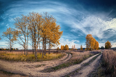 autumn pano (Monshtadoid) Tags: russia landscape nature autumn sky cloud blue panorama pano way road fork trees yellow skyline