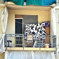 Torino. (GiannLui) Tags: parco torino dora po 2015 sturadilanzo agosto2015