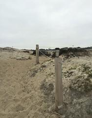 Asilomar State Beach/cloudy skies/sunrise (LOLO Italiana) Tags: ca sea nature landscape sand seascapes pacificocean pacificgrove centralcoast pathways privateproperty asilomarstatebeach cloudyskies rockyshoreline
