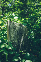 Margaret Wagner Gassmann (Marty Hogan) Tags: cemetery keweenawcounty cliffmine cliffcatholiccemetery cliftonmichigan cliffmichigan hiddengraveyard