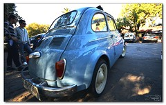 celestito (_Joaquin_) Tags: ex car familia uruguay dc nikon fiat sigma joaquin 600 autos montevideo 1020mm encuentro dx clasics clasicos hsm d3200 parquebatlle 6deseptiembre joafotografia joalc lapizaga
