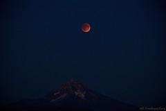 Blood Supermoon Lunar Eclipse over Mt Hood! (Jen Eisenbraun-Long) Tags: ilovenature nikond3100 on1pics