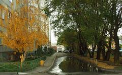 PA070085 (Jasonito) Tags: autumn russia olympus omsk осень 2015 россия mft омск micro43 microfourthirds epl3 olympusepl3