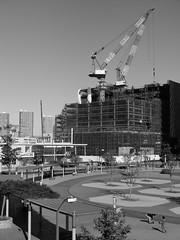 Development (sgryjp) Tags: park blackandwhite crane yokohama 横浜