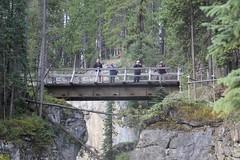 Sunwapta Falls (busdude) Tags: falls sunwapta