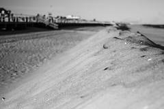 The dunes (JMFusco) Tags: newjersey sand jerseyshore springlake