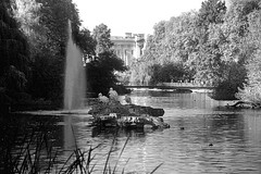 St. James Park (EmperorNorton47) Tags: park morning autumn england blackandwhite lake london fall fountain digital photo unitedkingdom citypark whitepelicans localpark
