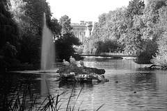 St. James Park (EmperorNorton47) Tags: park morning autumn england blackandwhite lake london fall fountain digital photo unitedkingdom citypark whitepelicans localpark