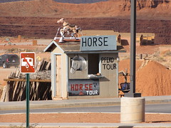 horse excursions (francesca.clemente) Tags: calico 66 route66 unitedstates la losangeles torrance fiesta farwest goldsilverpawnshop roadtrip usa canyon grancanyon helicopter monumentvalley valley arizona utha california nevada lasvegas vegas stratosphere bellagio casino needles pawnshop francescaclemente francesca clemente burrito foodtruck food electronics taco travel trip green europe asia america holiday bike art architecture nature city landscape sea italy sky cat cats