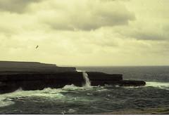 Oct188091 (bernardi.rita) Tags: aran irlanda scogliere isole
