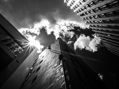 pay rise (Yiannis Yiasaris) Tags: city people blackandwhite monochrome streetphotography australia melbourne pancake 16mm ultrawideangle sonya6000