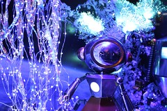 Robot (Tim Whitcombe) Tags: christmas winter light vacation holiday colour tourism window shop canon shopping weekend tourist robots explore inspire galerieslafayette windowshopping 600d canon600d