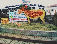 Carrot cow (lubovphotographer) Tags:           lge455 smartphonephotography smartphonephoto smartphone smartph photo dmitrovkremlin carrot sculpture cow picturethis