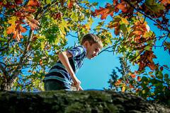 Liam sneaking on rock (sadlersr) Tags: gardenofthegods shawneenationalforest fall2016 nature outdoors trees rocks geology sky lightroom liam 2016 october2016