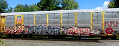 mid - fleks - jero - each (timetomakethepasta) Tags: mid fleks jero each icr la pubes blitz trigz bugz freight train graffiti art union pacific autorack