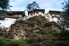 Approaching Trongsa Dzong (whitworth images) Tags: stone administration building old himalaya himalayas bhutan enormous imposing culture fortress travel approach custom cliff walk ancient rock high big dzong traderoute windows government above west tree monastery white walls asia trongsa large steps below traditional trongsadzongkhag