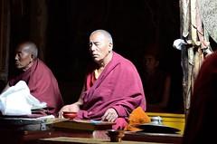 contemplazione (silviasalvi) Tags: ladakh preghiera monaco buddismo contemplazione light shadow chiaroscuro
