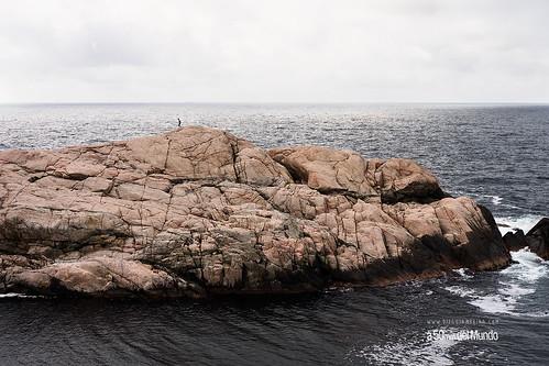 El joven y el mar