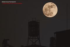 Super Moon. Taiwan (老莫之影 (Morris)) Tags: supermoon moon taiwan nikon