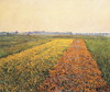 The_Yellow_Fields_at_Gennevilliers (artmuse10) Tags: caillebotte