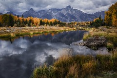 Ring of Gold (slava_kushvalieva) Tags: grandtetons hdr highdynamicrange nps nationalpark nationalparkservice schwabacherlanding snakeriver wyoming autumn beaver calm clouds dam fall geology grass green landscape mountains natural nature peak range river rock sky trees water yellow moose unitedstates us