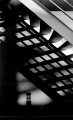 SHOWCASE (Dinasty_Oomae) Tags: bolsey  bolseyb2 b2  blackandwhite bw monochrome outdoor  chiba   funabashi  steps