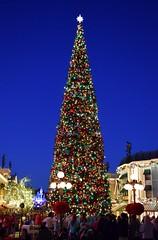 Disneyland Visit 2016-11-27 - Town Square - Christmas Tree and Sleeping Beauty Castle Lit Up (drj1828) Tags: us disneyland dlr visit 2016 mainstreet christmastree townsquare sleepingbeauty castle