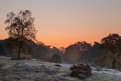 Der Moment des Sonnenaufgangs (Jrgenshaus) Tags: deutschland wahnerheide sonne frost winter nebel verlaufsfilter day cloudy