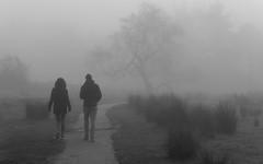 walking into the unknown (neil.bulman) Tags: countryside longshawestate peakdistrict nature nationalpark derbyshire longshaw fog nationaltrust derbyshiredalesdistrict england unitedkingdom gb