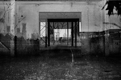 the foregone conclusion (jonathancastellino) Tags: door leica city trees toronto abstract tree abandoned leaves composite skyline project entropy leaf ruins path decay ruin m summicron journey frame series through scape derelict northyork