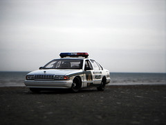 The World's most recently posted photos of 1995 and caprice