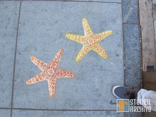 fnnch_sea_stars